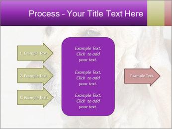 0000074715 PowerPoint Templates - Slide 85