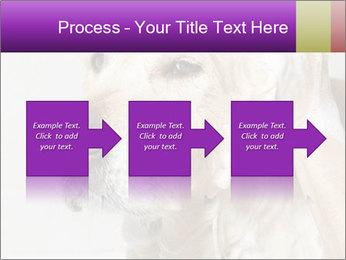 0000074715 PowerPoint Templates - Slide 88
