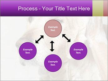 0000074715 PowerPoint Templates - Slide 91