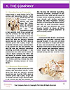 0000074715 Word Templates - Page 3