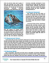 0000074718 Word Templates - Page 4