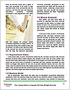 0000074721 Word Templates - Page 4