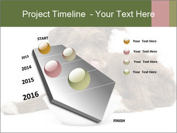0000074724 PowerPoint Templates - Slide 26
