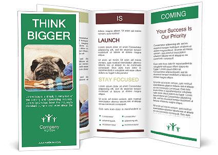 0000074728 Brochure Template
