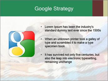 0000074728 PowerPoint Template - Slide 10