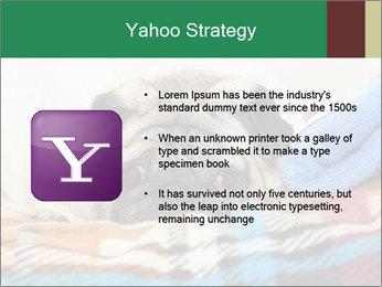 0000074728 PowerPoint Template - Slide 11