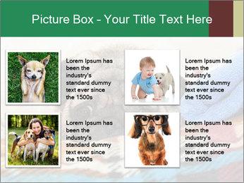 0000074728 PowerPoint Template - Slide 14