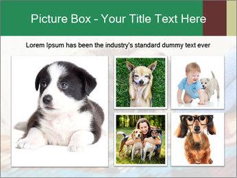 0000074728 PowerPoint Template - Slide 19