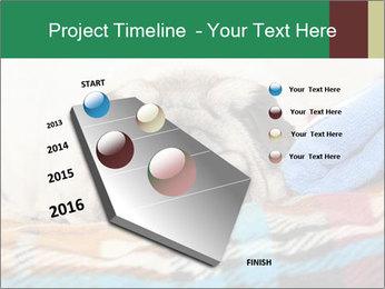 0000074728 PowerPoint Template - Slide 26