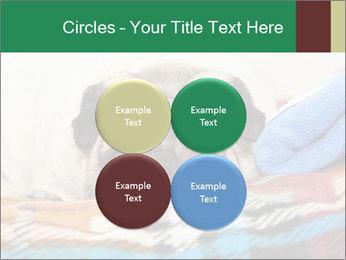 0000074728 PowerPoint Template - Slide 38
