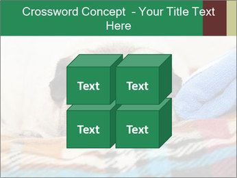 0000074728 PowerPoint Template - Slide 39