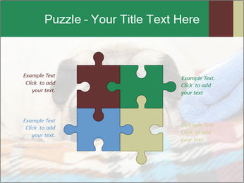 0000074728 PowerPoint Template - Slide 43
