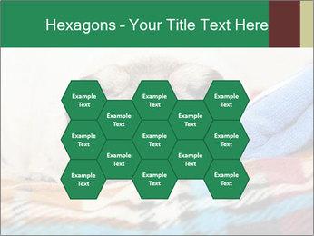 0000074728 PowerPoint Template - Slide 44