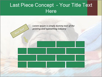 0000074728 PowerPoint Template - Slide 46