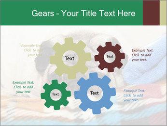0000074728 PowerPoint Template - Slide 47