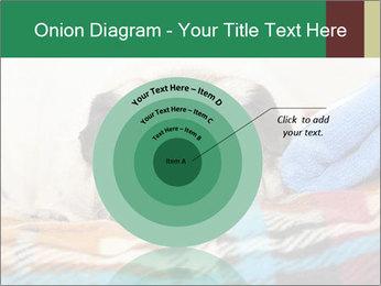 0000074728 PowerPoint Template - Slide 61