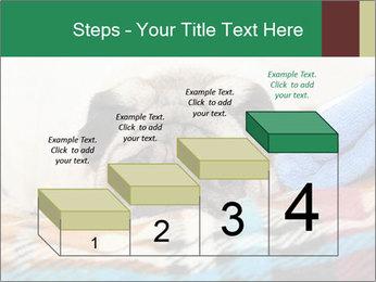 0000074728 PowerPoint Template - Slide 64