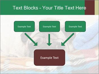 0000074728 PowerPoint Template - Slide 70