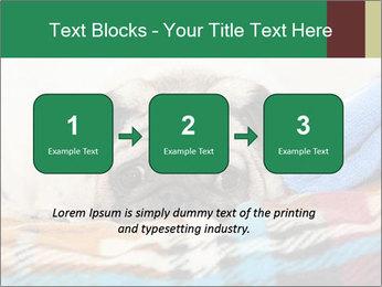 0000074728 PowerPoint Template - Slide 71
