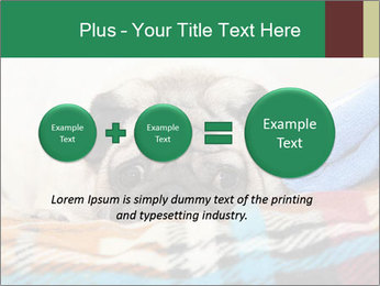 0000074728 PowerPoint Template - Slide 75