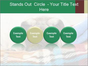 0000074728 PowerPoint Template - Slide 76