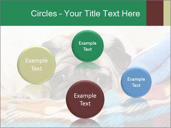 0000074728 PowerPoint Template - Slide 77