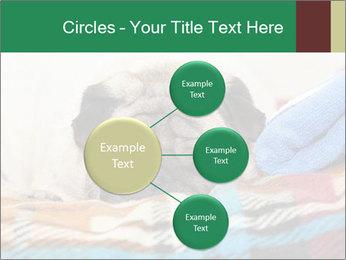 0000074728 PowerPoint Template - Slide 79