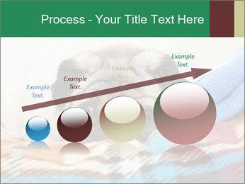 0000074728 PowerPoint Template - Slide 87