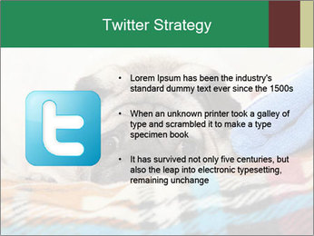 0000074728 PowerPoint Template - Slide 9