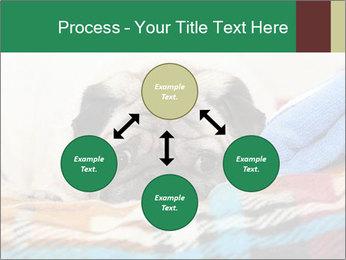 0000074728 PowerPoint Template - Slide 91