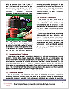 0000074737 Word Templates - Page 4