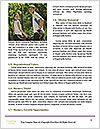 0000074745 Word Templates - Page 4