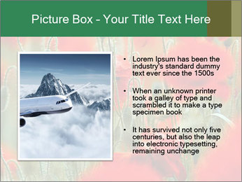 0000074748 PowerPoint Templates - Slide 13