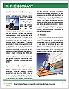 0000074748 Word Template - Page 3