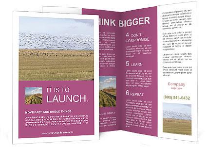 0000074750 Brochure Template