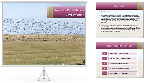 0000074750 PowerPoint Template