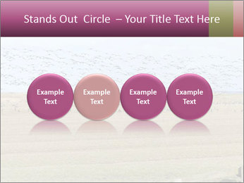 0000074750 PowerPoint Template - Slide 76