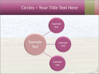 0000074750 PowerPoint Template - Slide 79