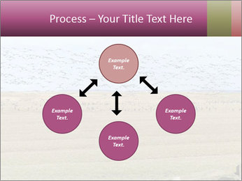 0000074750 PowerPoint Templates - Slide 91
