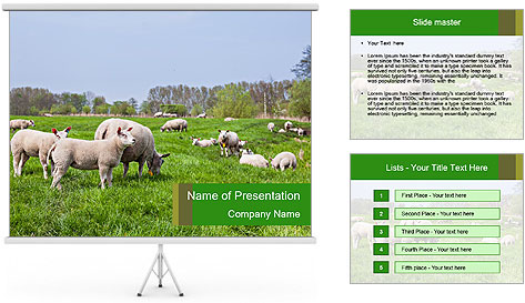 0000074755 PowerPoint Template