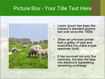 0000074755 PowerPoint Templates - Slide 13