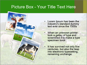 0000074755 PowerPoint Templates - Slide 17