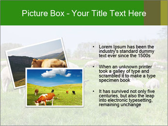 0000074755 PowerPoint Templates - Slide 20