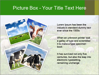 0000074755 PowerPoint Templates - Slide 23