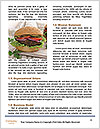 0000074761 Word Template - Page 4