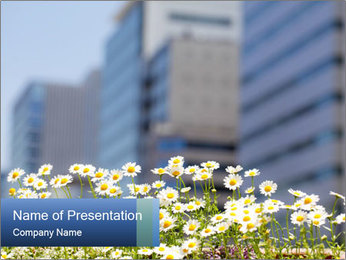 0000074766 PowerPoint Template