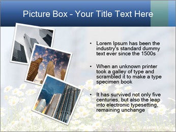 0000074766 PowerPoint Template - Slide 17
