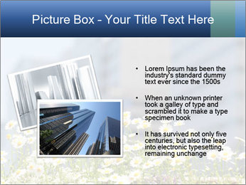 0000074766 PowerPoint Template - Slide 20