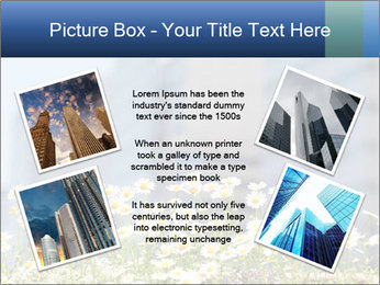 0000074766 PowerPoint Template - Slide 24