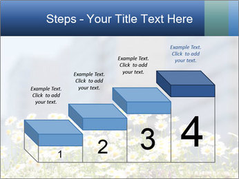 0000074766 PowerPoint Template - Slide 64